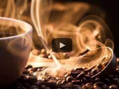 Lidder-knjigovodstveni program: Knjigovodstveni program koji sam kuva kafu?